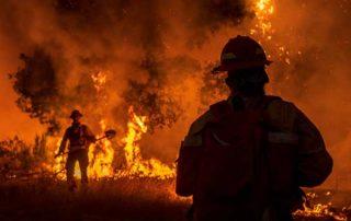 Wildfire photo